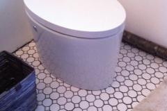 electric_toilet